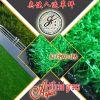 Дерновина нейлона зеленая искусственная для дома конструирует/синтетическая трава для занятности