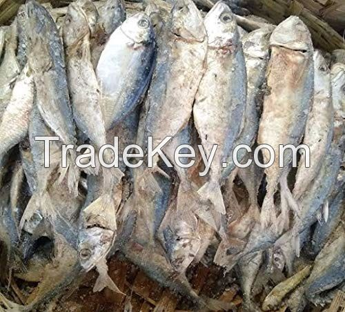Top Quality Supplier of Dry Fishes