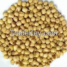 WHOLESALE DRIED LOTUS SEED AVAILABLE AT GREAT RATES