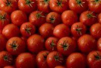 Свежие томат...