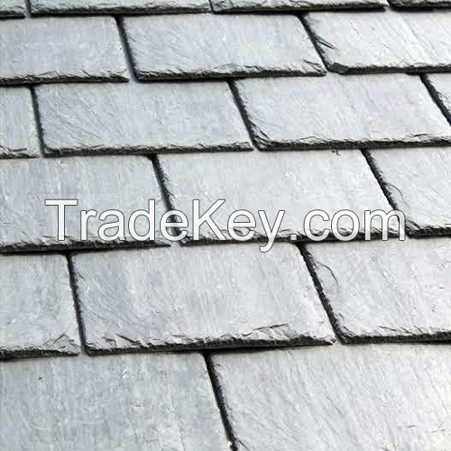 Brazilian natural slate tiles