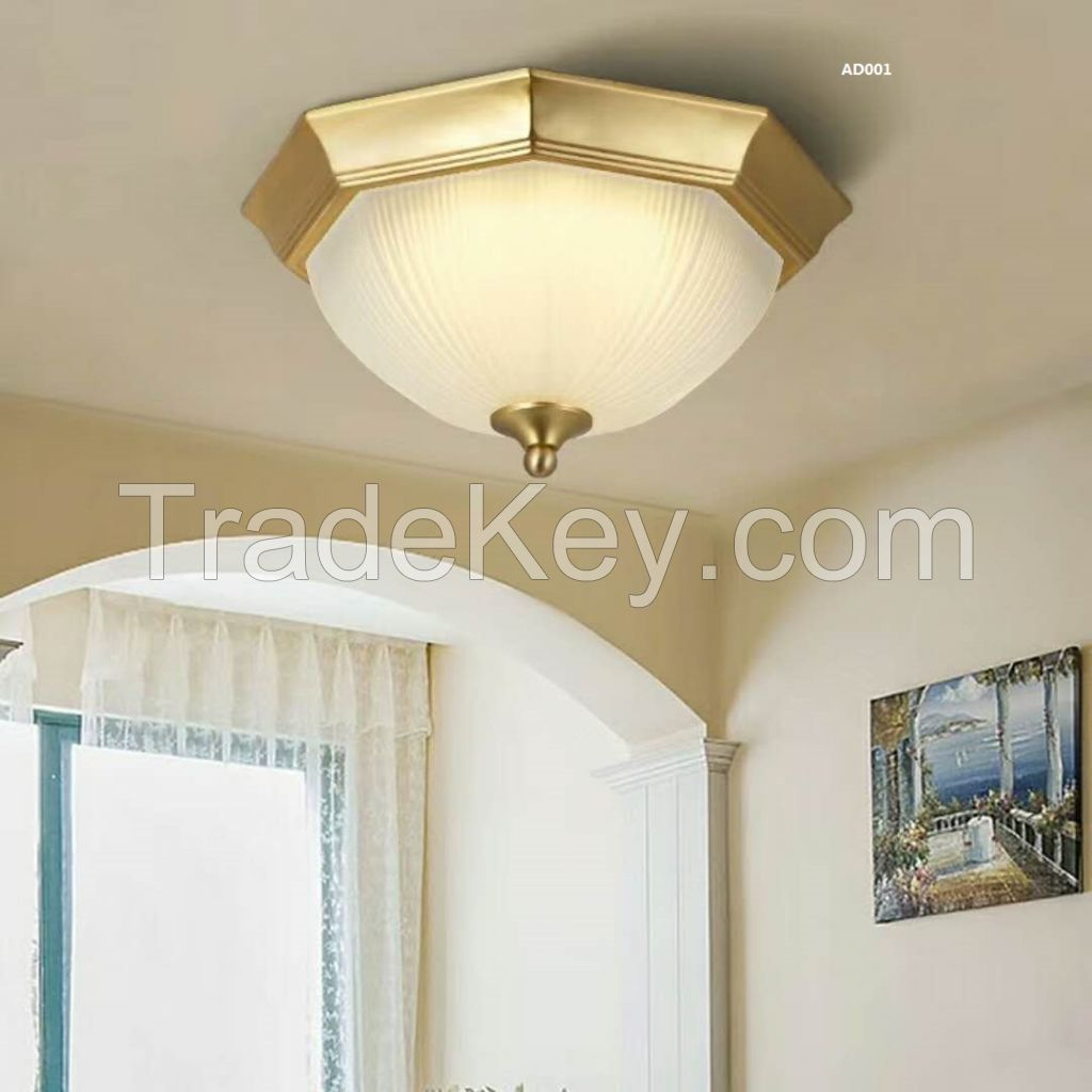 ceiling  lignt/LED  light/ home  light
