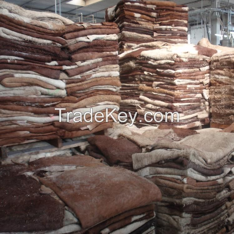 Dry and Wet Salted Donkey / Wet Cow Hides