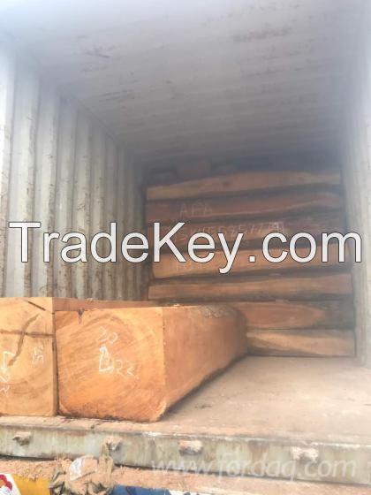 Square Hardwood Logs