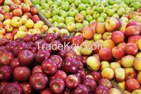 남아프리카에서 신선한 사과