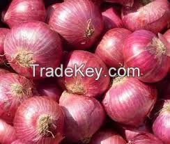 Quality fresh red / white onions