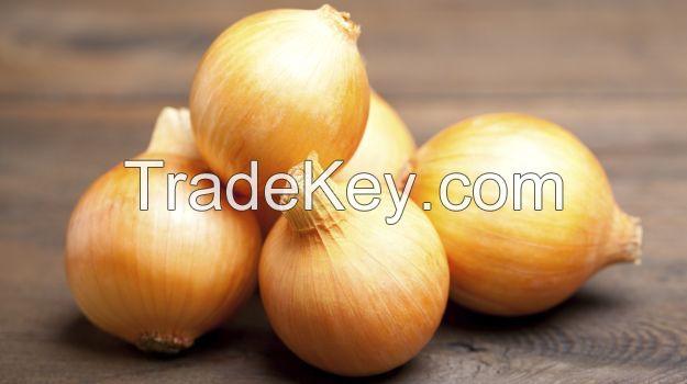 Fresh Red, Yellow, White Onions
