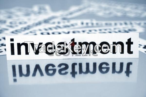 INVESTMENT OPPORTUNITIES AND BUSINESS PARTNERSHIPS