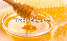 Organic and natural honey for sale