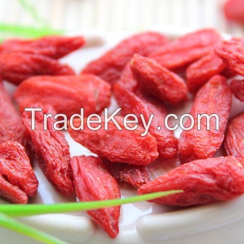 Top Quality Dried Goji Berry with Low Price