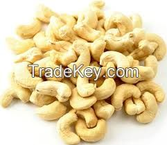 Dried Raw Cashew Nuts with Shells