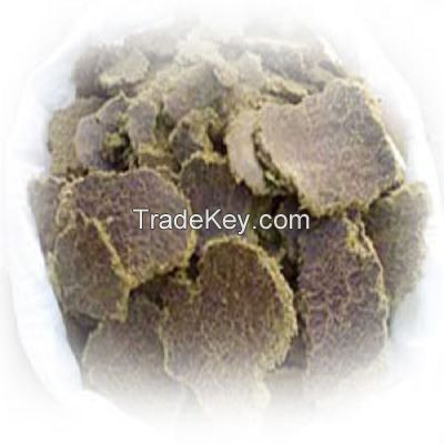 cotton seed meal/oil cake available