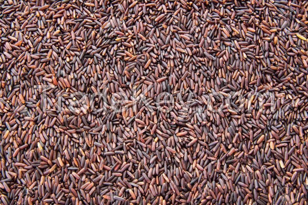 Riceberry Brown Rice