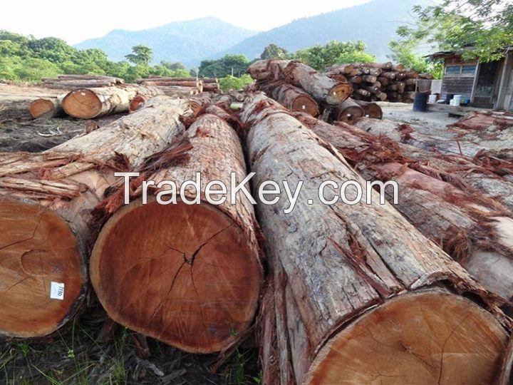 wood, tali wood, padauk wood, bubinga wood, iroko wood, timber wood, mahogany wood