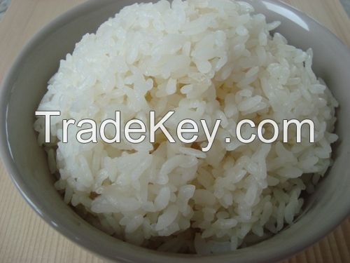 Sell Steam Rice
