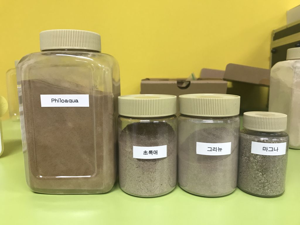 Plant extracts Philogreen feed additive to improve protein absorption in broilers