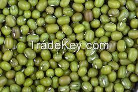 Green Mung Beans/Vigna Beans