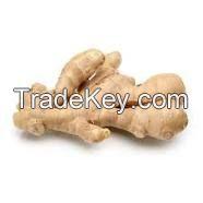 Sell Ginger