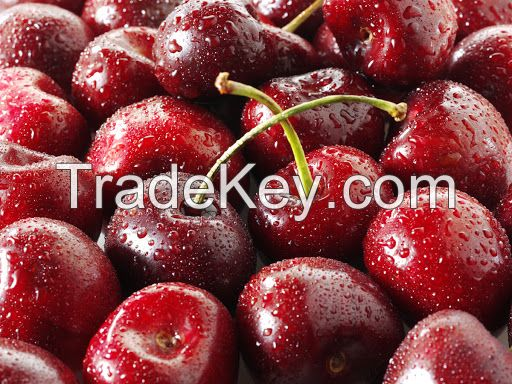 RED FRESH  SWEET CHERRY