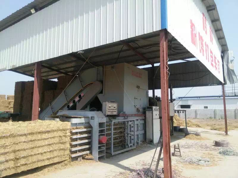 hydraulic horizontal straw baler with belt conveyor