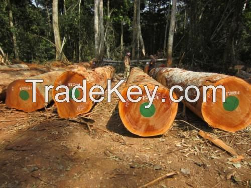 Sapelli  timber  logs and sawn lumbers