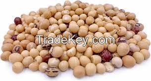 Sell Bambara Nut
