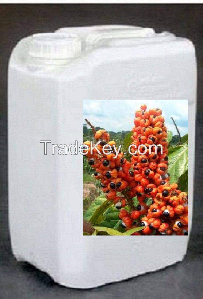 CONCENTRATE OF GUARANA NATURAL LINE FOR THE PRODUCTION OF ENERGY DRINKS