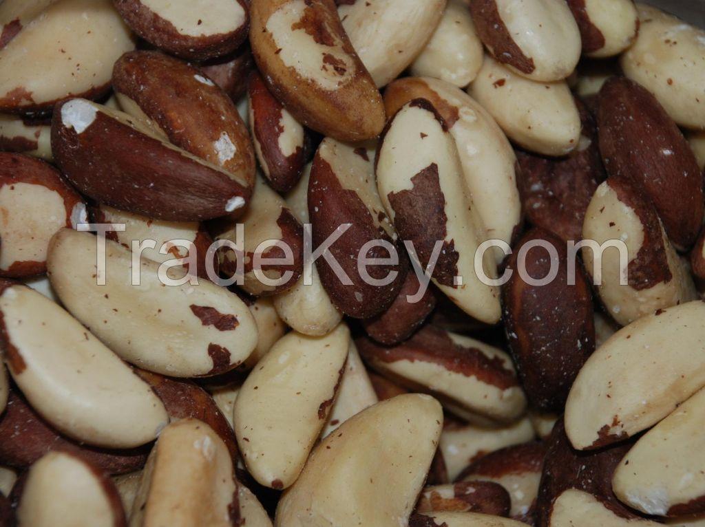 Dried/Raw/Roasted/Organic Brazil Nuts