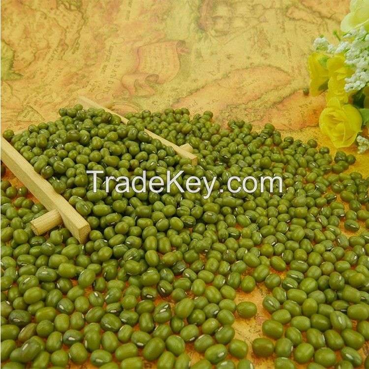 Green Mung Beans, Dal, Mung Dal,