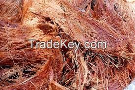 Coconut Fiber