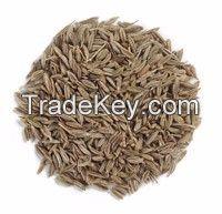 cumin seeds (2015 new crops)