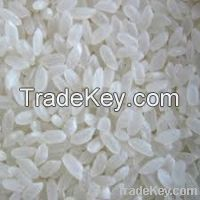 Rice Tastic For Sale