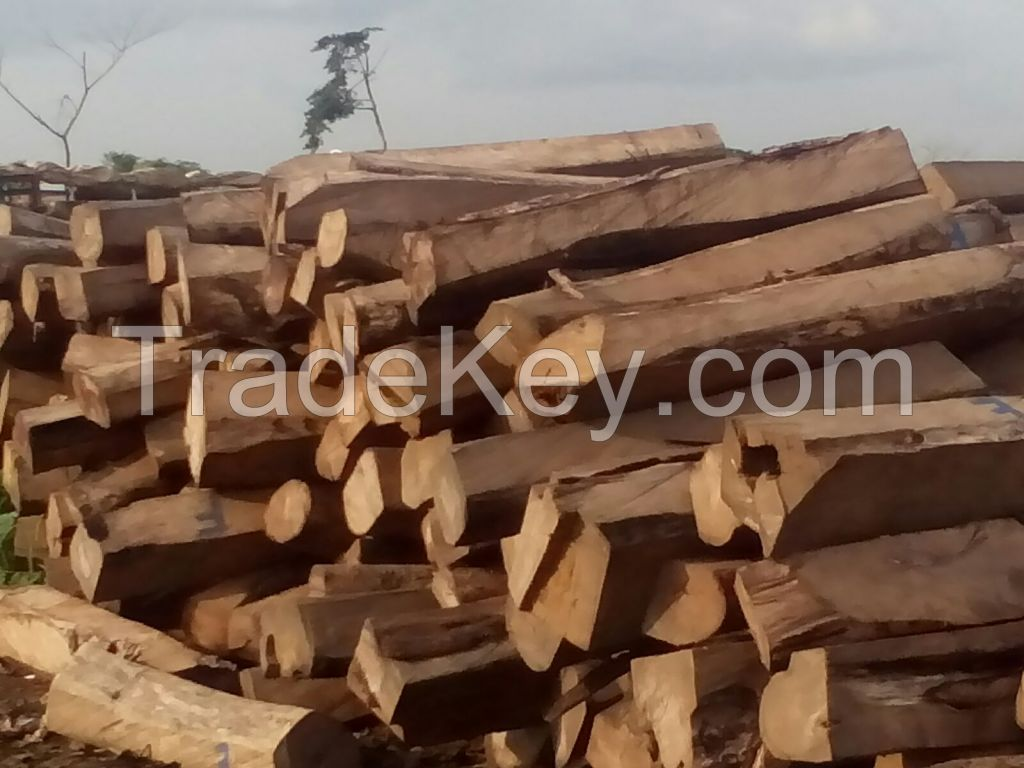 We sell Kosso wood from Taraba in Nigeria