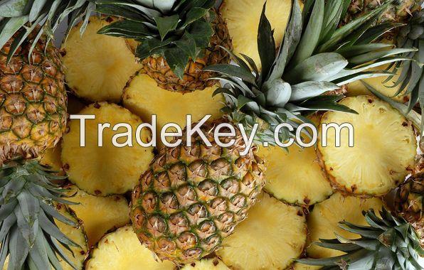 Fresh Pineapples
