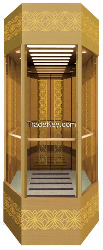Delfar observation elevator with good quality
