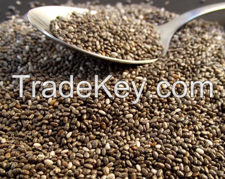 Selling Chia Seeds