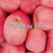 Chinese Fuji Apple, Chinese Golden Pear, Dried Appricot, Fresh Mandarin Oranges, Fresh Nash Pears, Preserved Raisins