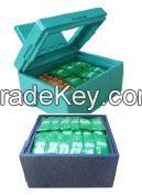 Multi-purpose delivery box(GEEPP box))