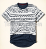 FULL CONTAINER HOLLISTER STYLES T-SHIRTS 100% COTTON