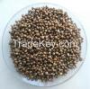 Sell Diammonium Phosphate DAP