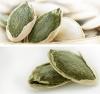 Pumpkin Seeds in Shell