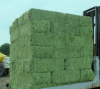 Best price Timothy Hay / Alfalfa Hay for sale