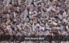 Sell Lower Level Emitting Ash Palm Kernel Shell