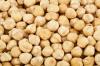 Best Price Of Garbanzo Beans