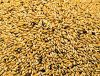 Animal Feed Seaweed Meal for sale ta a modraste price