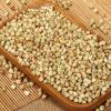 best quality sweet buckwheat with best price