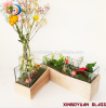 2018 new cheap plant glass terrarium for home decoration wood base
