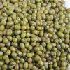 Whole Green Mung Beans