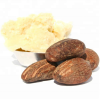 Top Quality Shea Nuts best prices