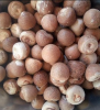 Dried Areca Nut-Whole and Split Betel Nut